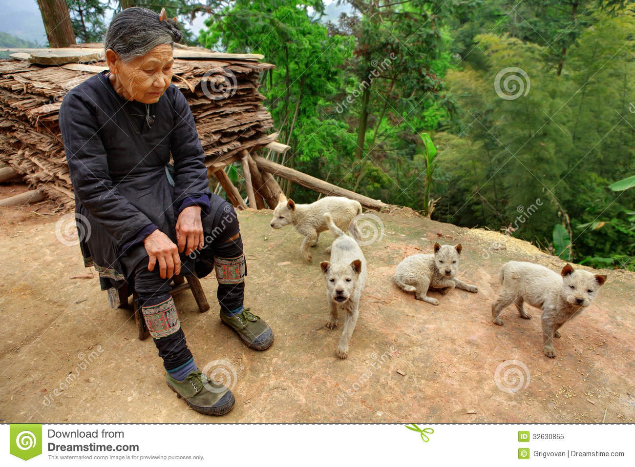 Southwest Home Plans Guizhou Province China Older Chinese Lady In Green
