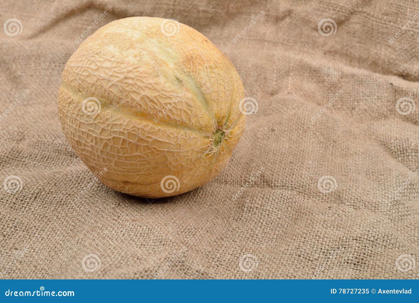 Gul melon på jutesäcken äta som är sunt Bio mat från lantgård