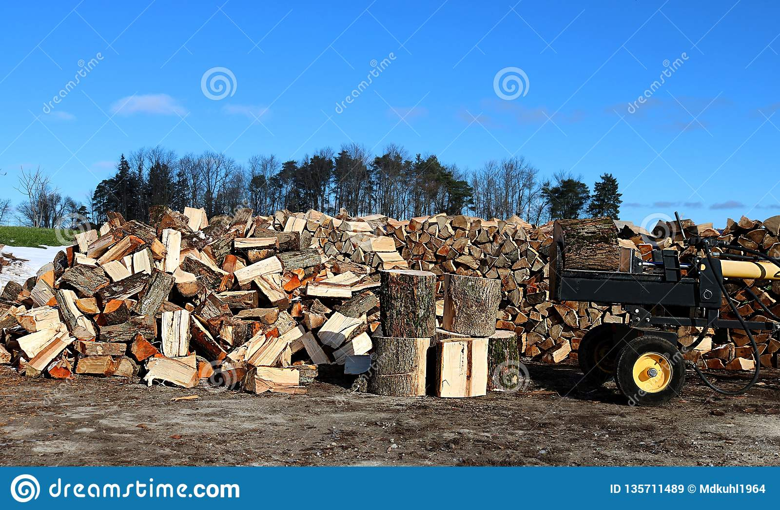 Gul och svart trädelare med kvarter av trä, hög av splittringträ och trähögen