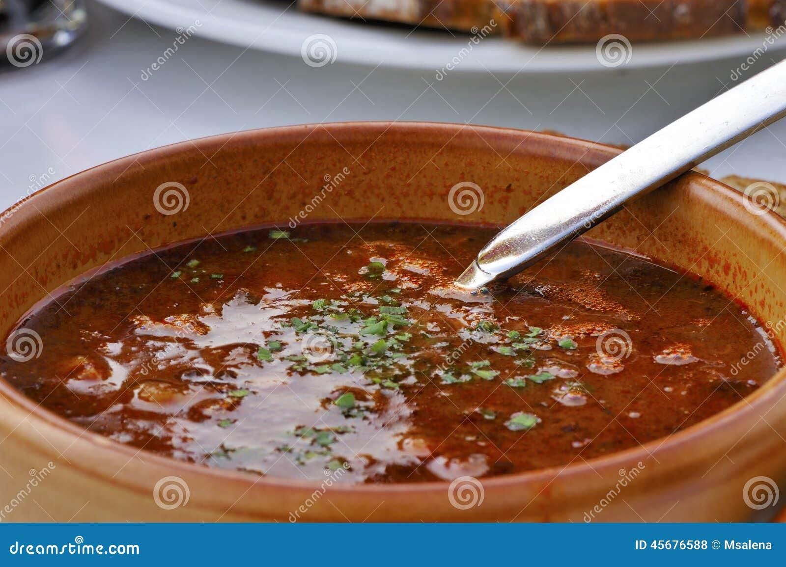 Gulasch-soppa
