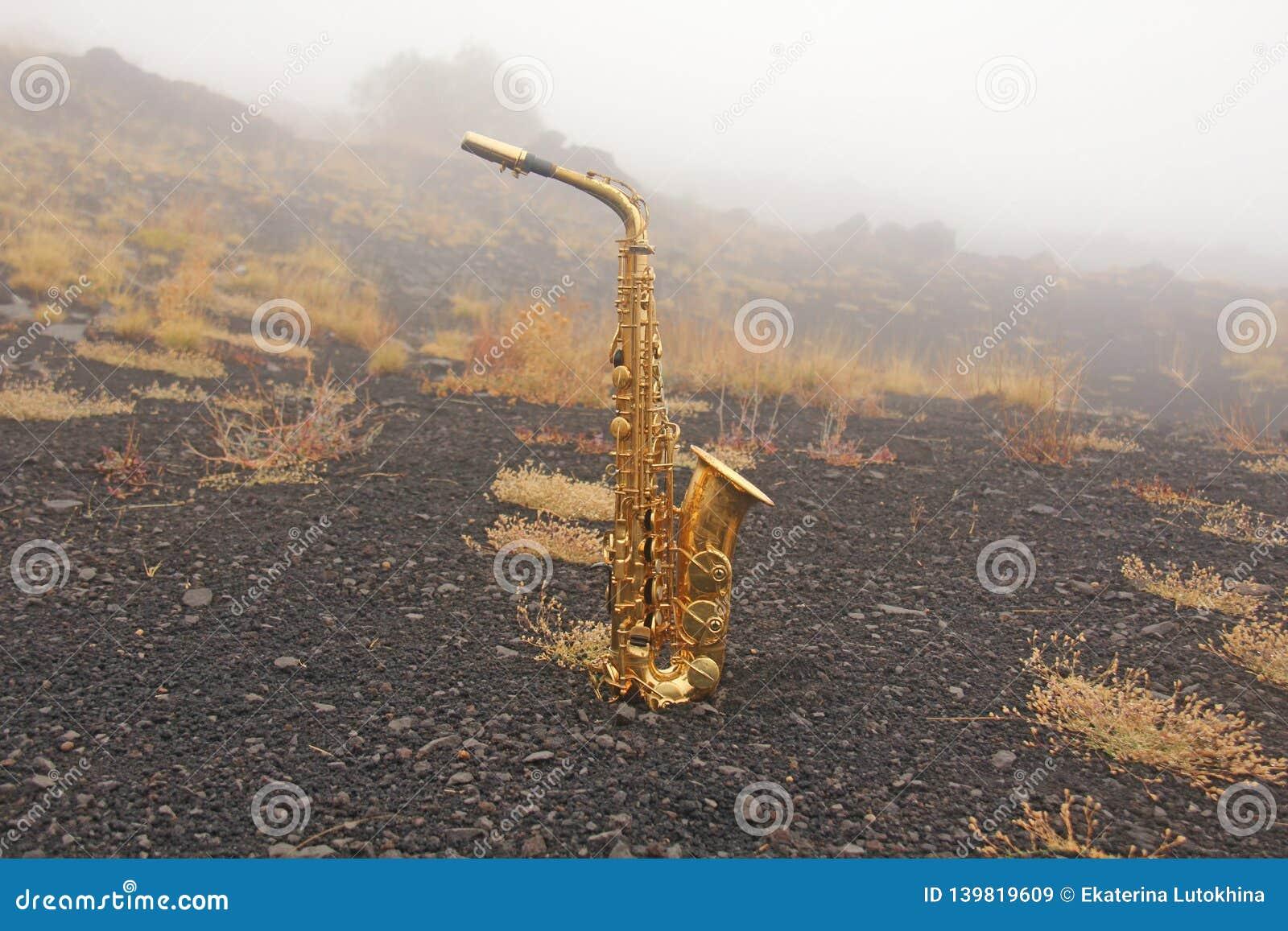 Guld- Alto Saxophone Lies på den svarta bakgrunden Romantiker och