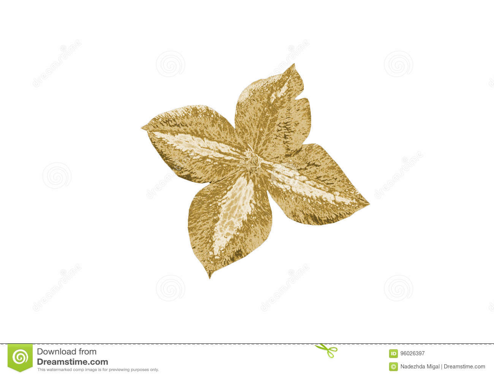 Guld- blomma