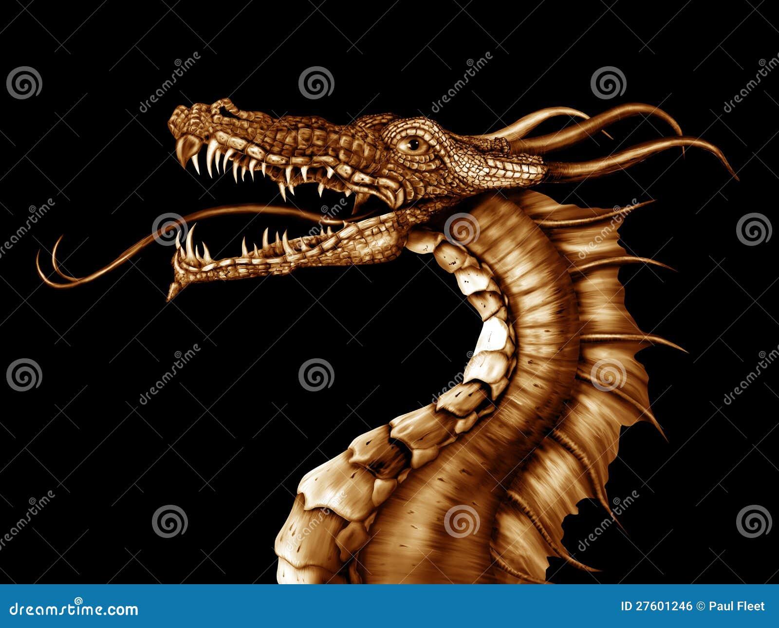 Guld- drake