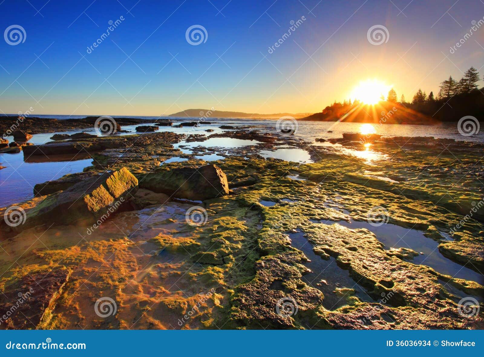 Guld- solstrålar sträcker över reverna på solnedgången