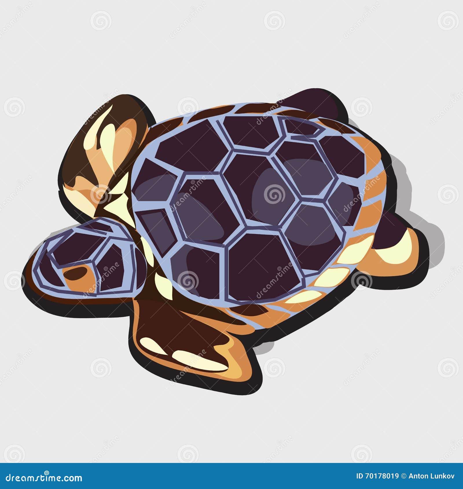 Guld- statyett av sköldpaddan med blåttskalet