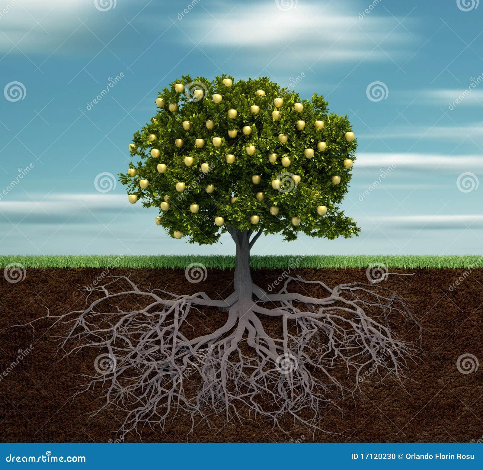 Guld- tree för äpple