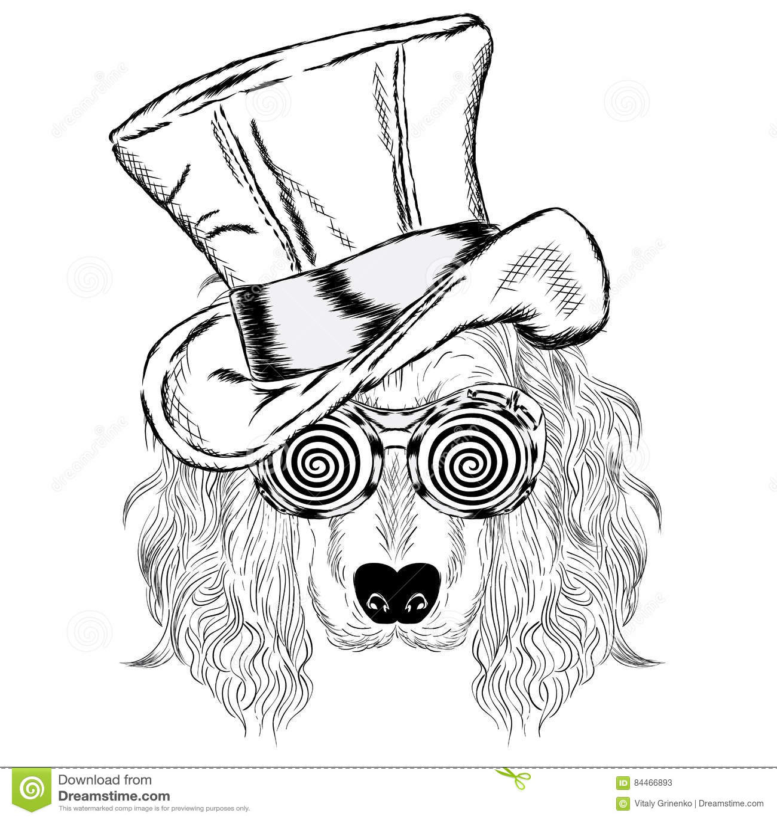 Gullig hund i en ovanlig hatt