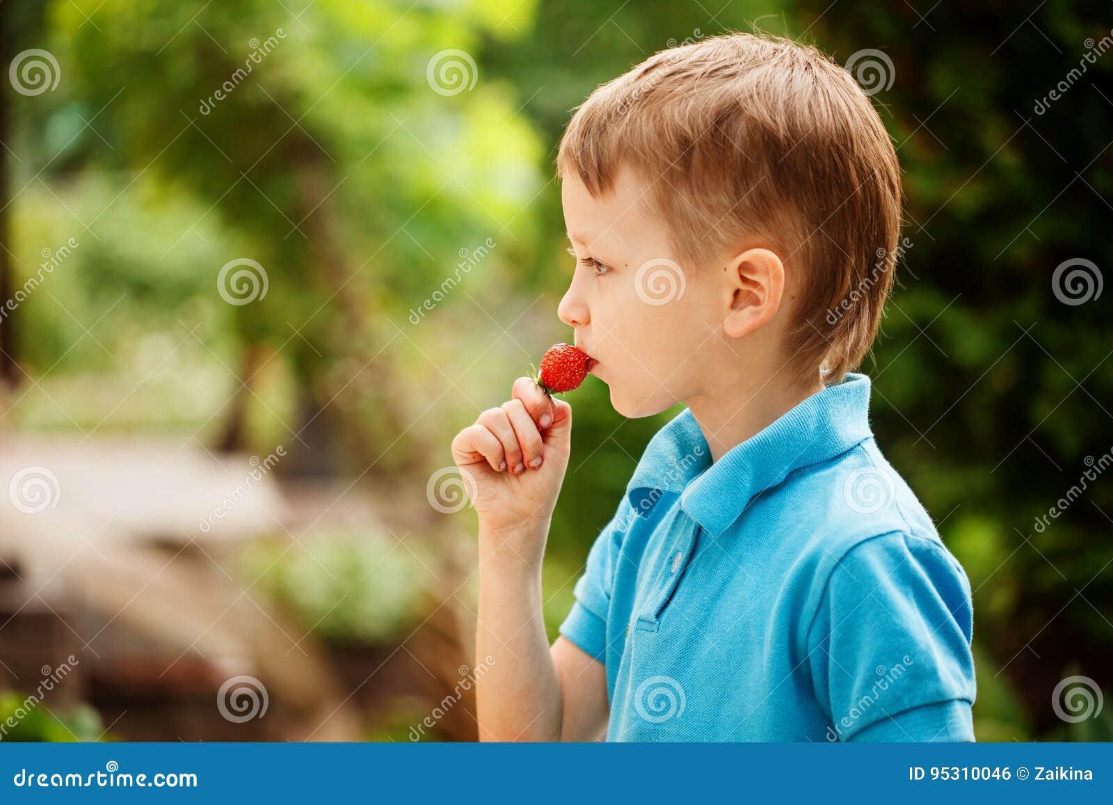 Gullig pys som äter en röd jordgubbe