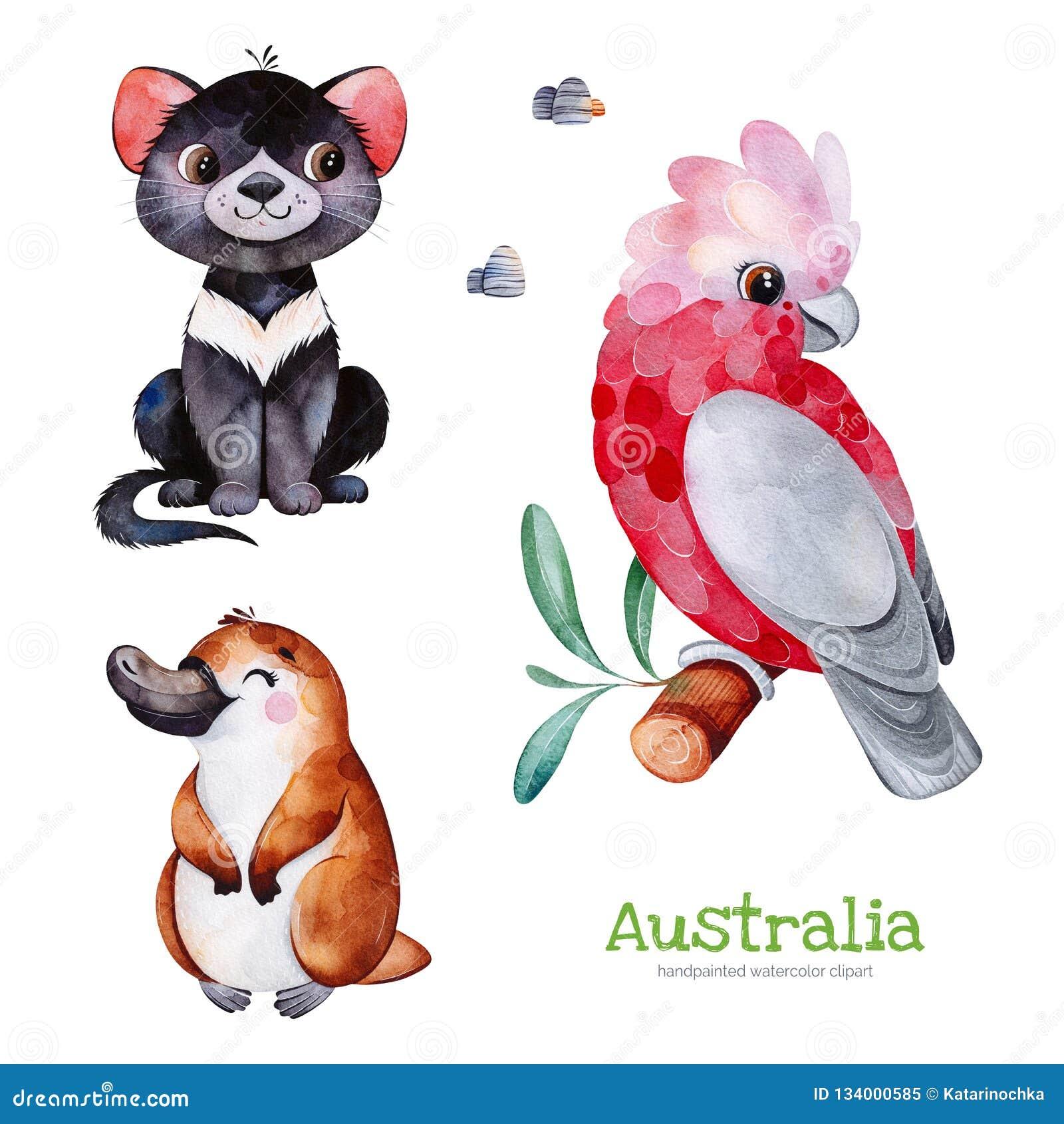 Gullig samling med Tasmanian jäkel, näbbdjur, kakadua, stenar