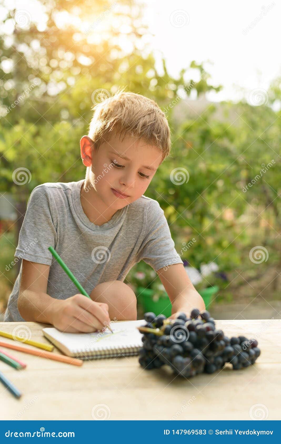 Gulliga pojkeattraktioner med blyertspennastilleben ?ppen luft Tr?dg?rd i bakgrunden id?rikt begrepp