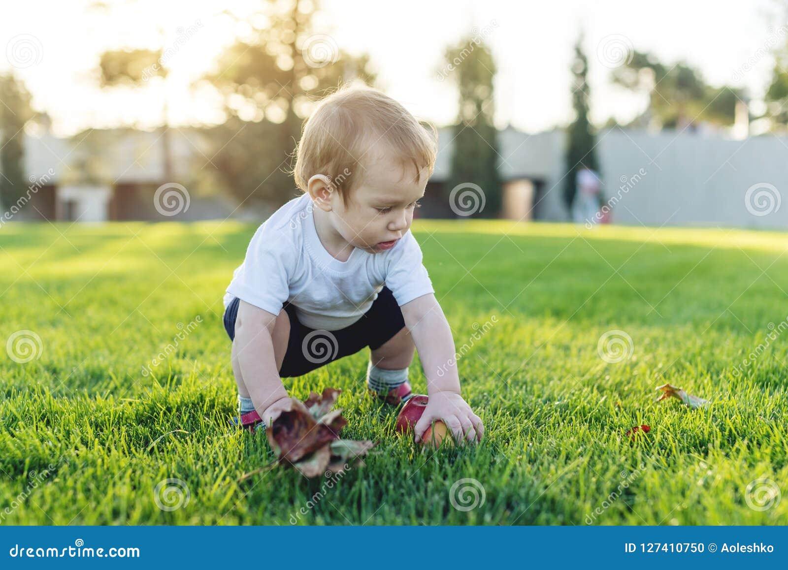 Gulligt behandla som ett barn att spela med äpplen på en grön gräsmatta i parkerar En-år-gammalt barn för begrepp