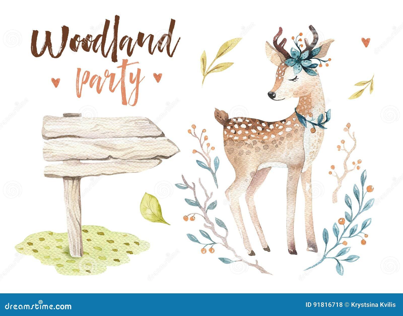 Gulligt behandla som ett barn isolerade illustrationen för hjortar den djura barnkammaren för barn Teckning för vattenfärgbohosko