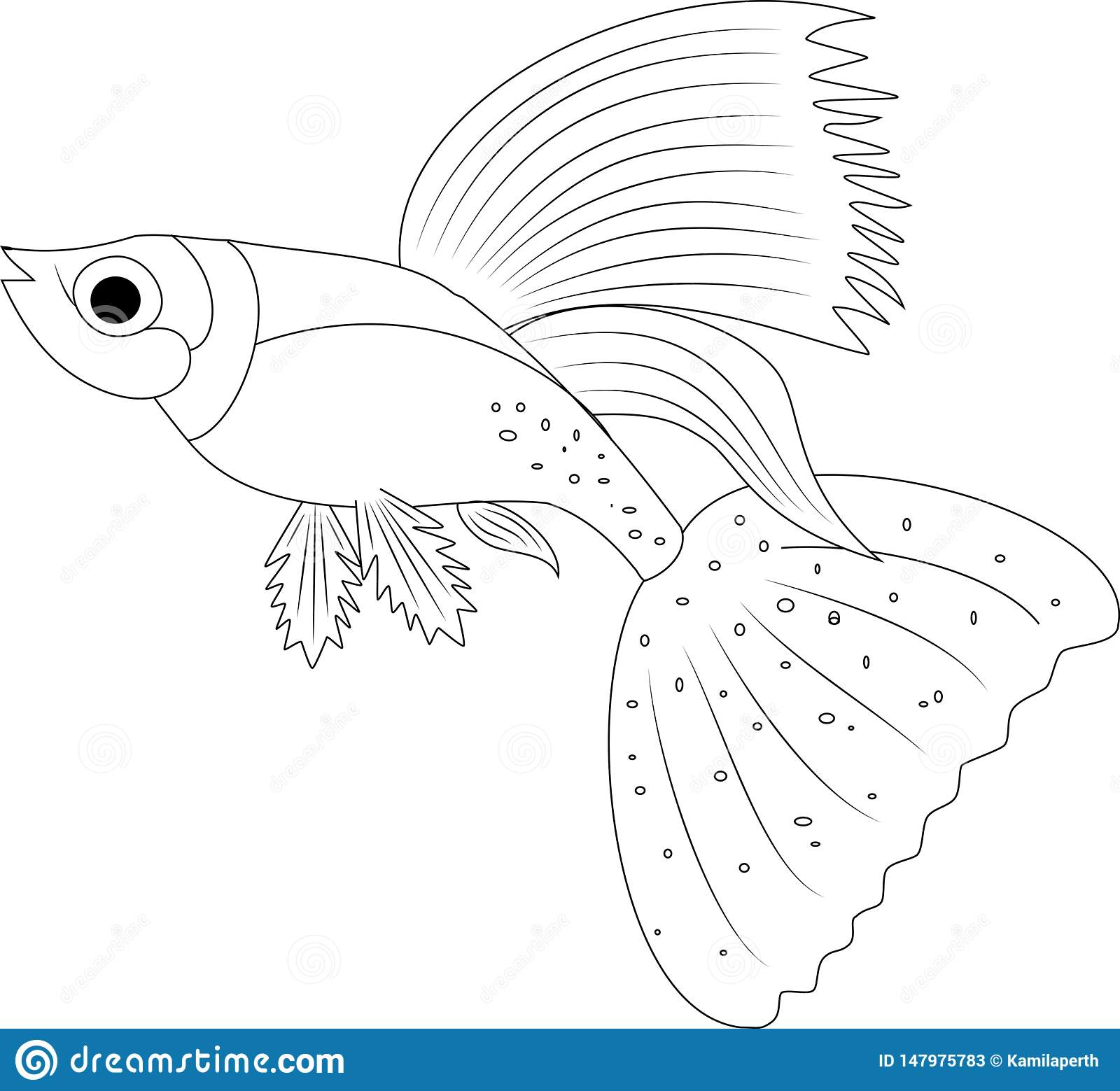 Fish Coloring Pages Printable Unique Rainbow Fish Coloring Pages ...   1559x1600