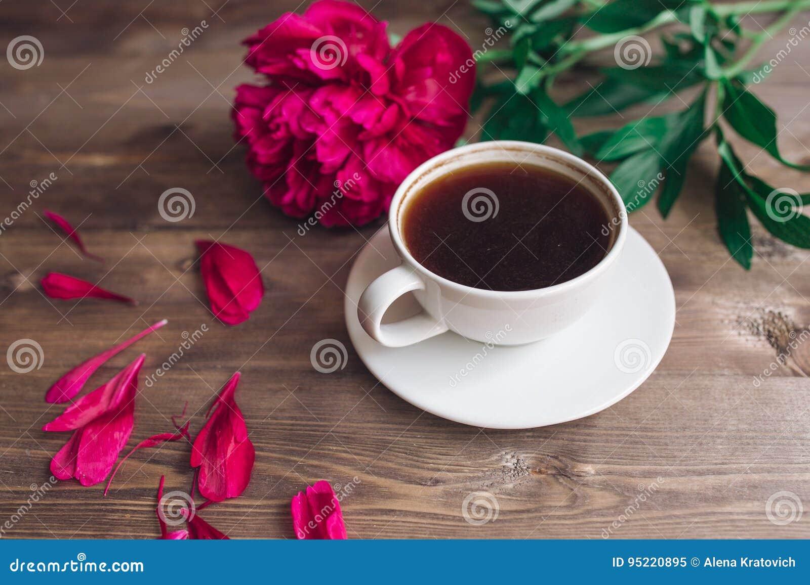 Guten Morgen Stockbild Bild Von Frisch Floral Pfingstrose