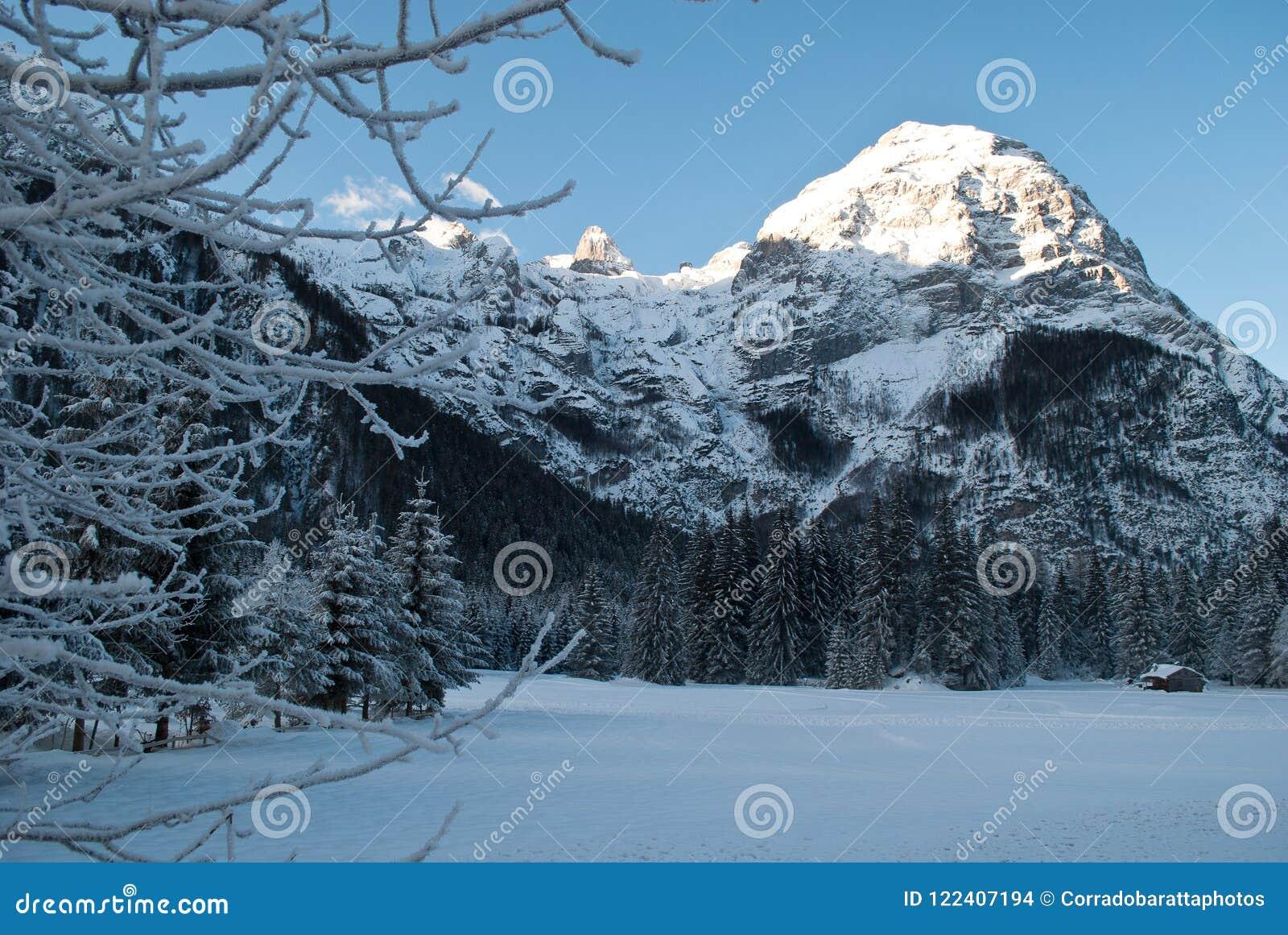Gutenmorgen Sehr Kalt Auf Den Bergen Bedeckt Durch Frischen