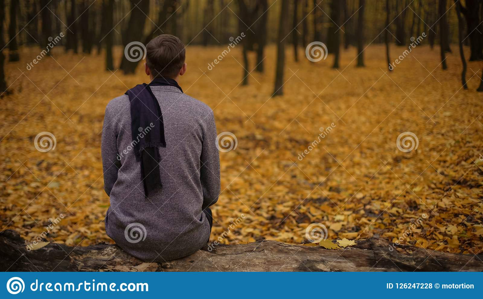 Guy sitting in park inspired by beautiful nature and thinking about past life