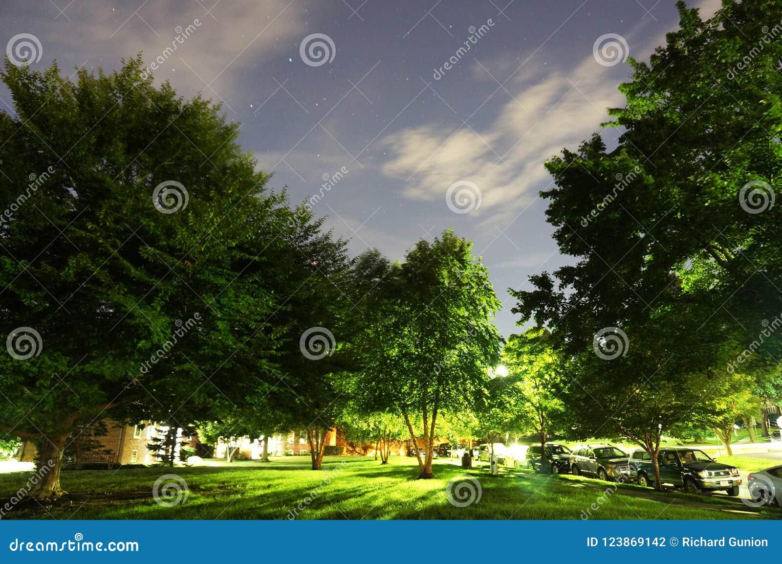 Gwiaździsta noc w sąsiedztwie