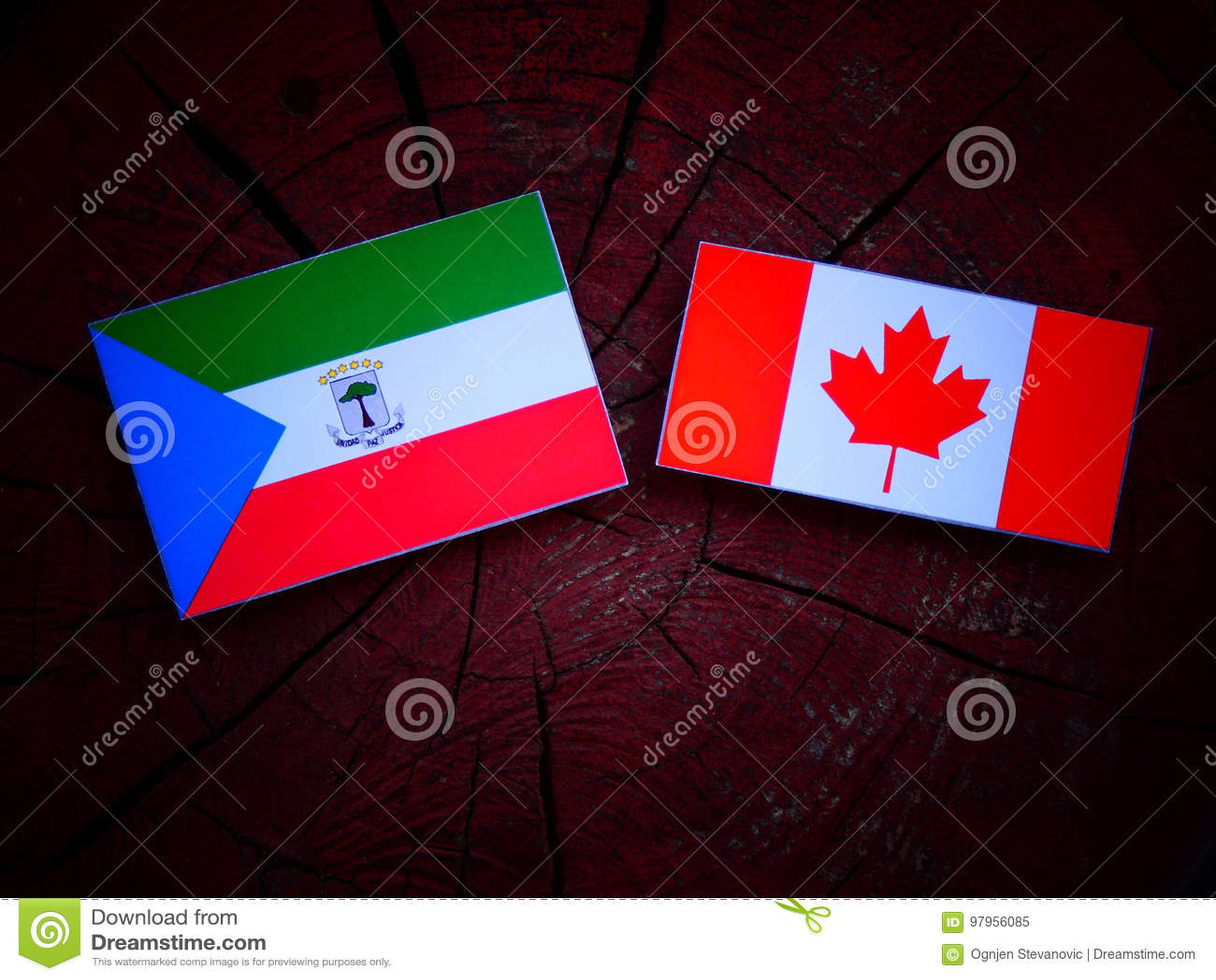 Gwinei Równikowej flaga z kanadyjczyk flaga na drzewnym fiszorku odizolowywającym