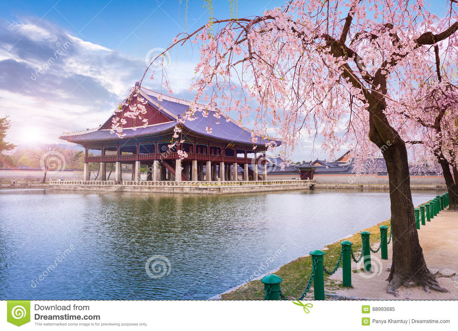 Gyeongbokgung palace in spring South Korea.