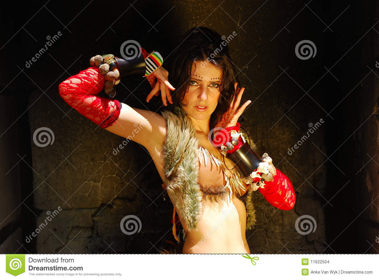 Gypsy Dancer Stock Images Image 11622504