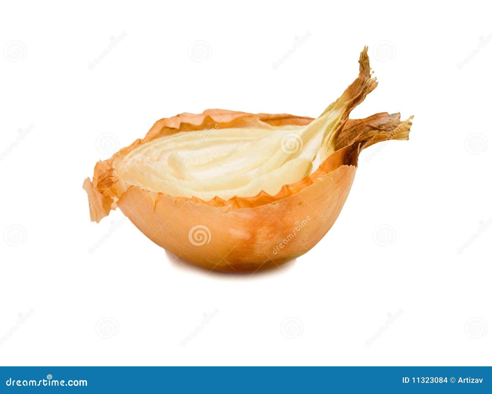 Hälfte der Zwiebel