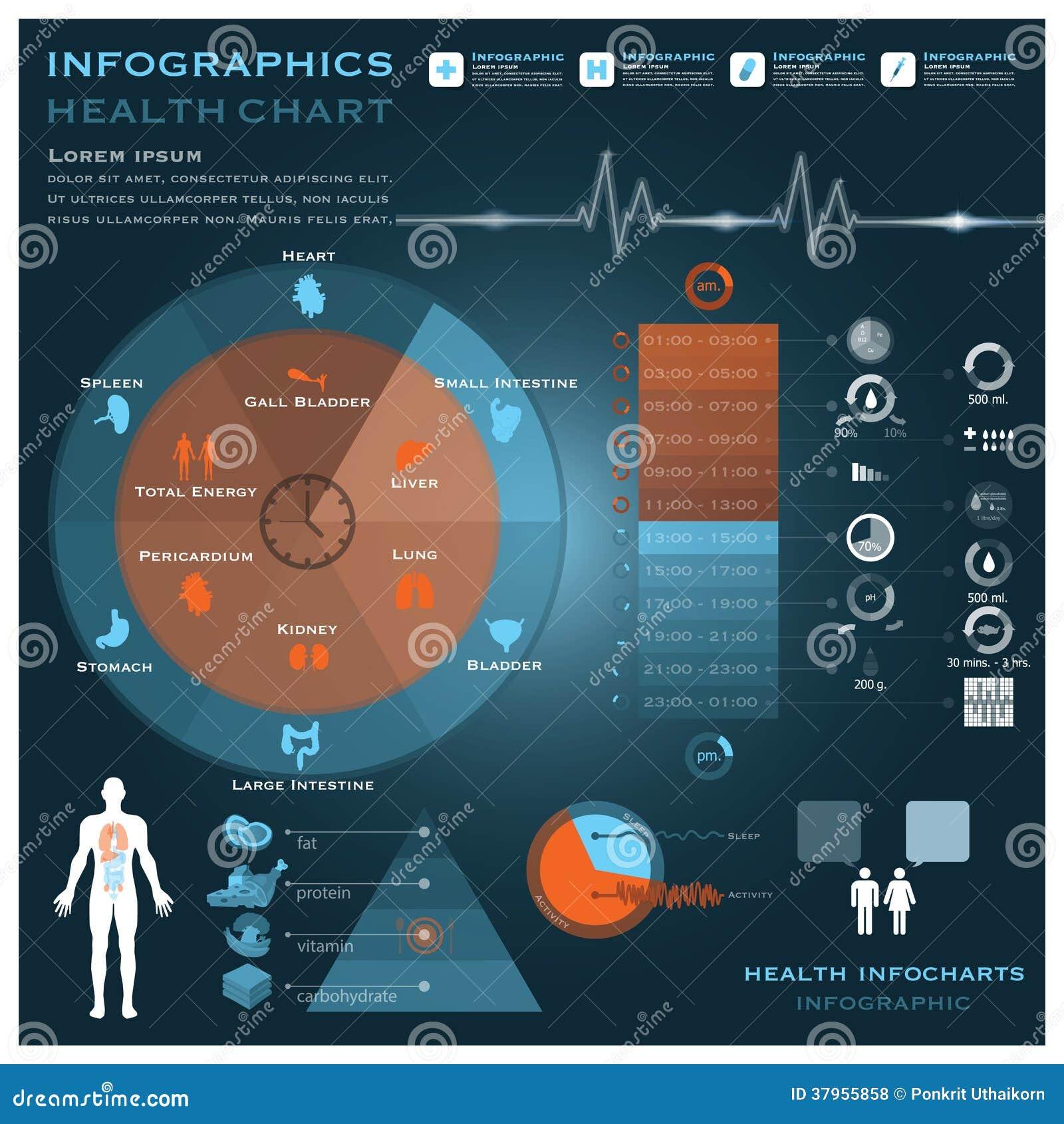 Hälsa och läkarundersökning Infographic Infocharts för biologisk klocka