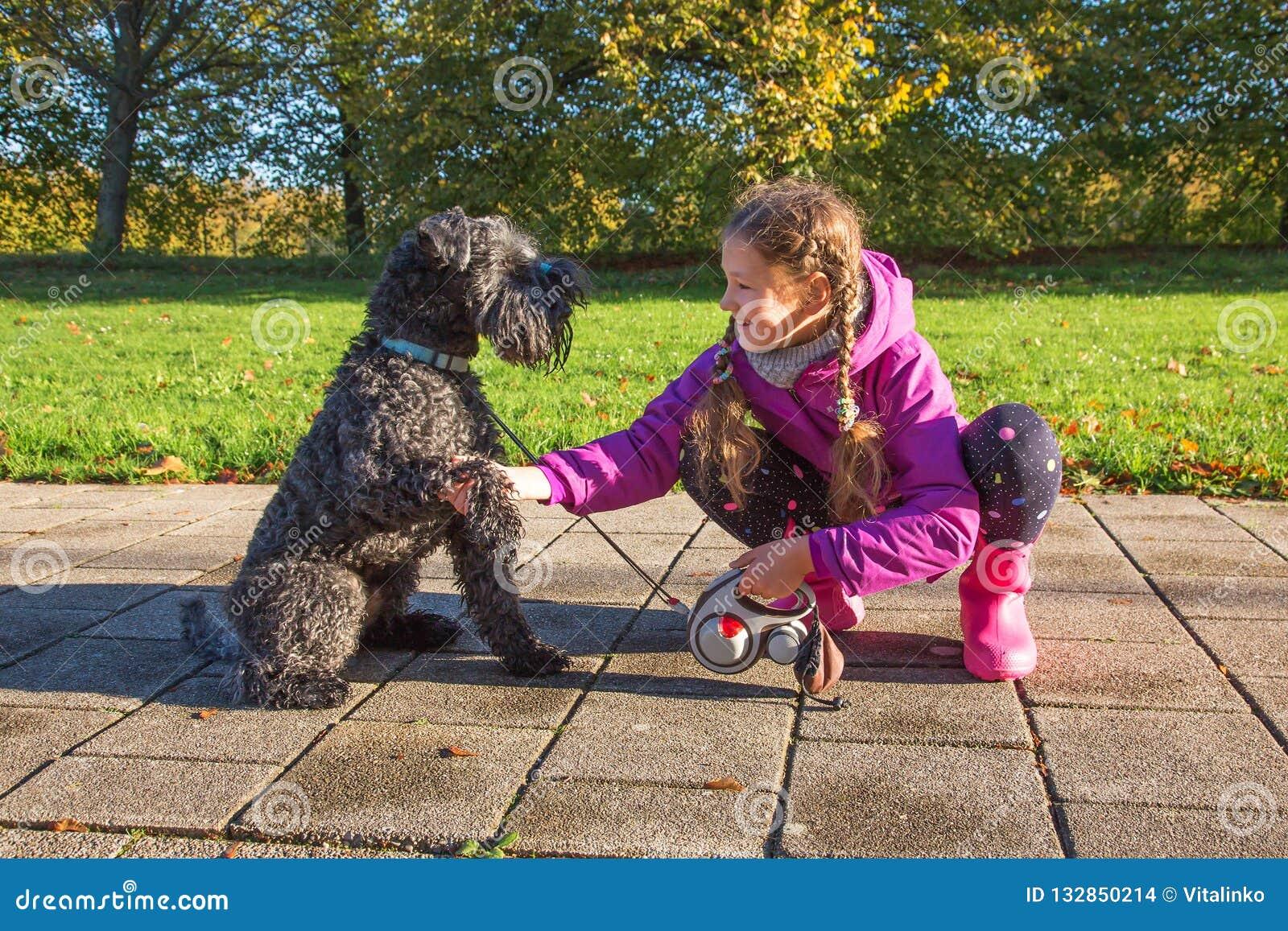 Händedruckhund und -kind Freundschaft mit Tieren