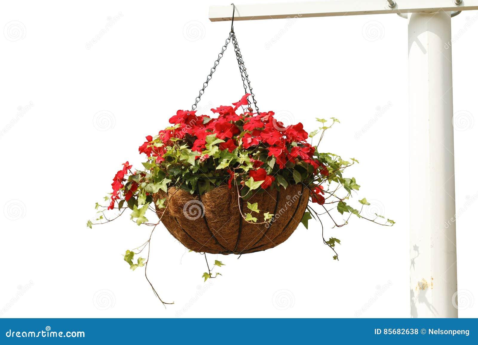 Hänga för blommor