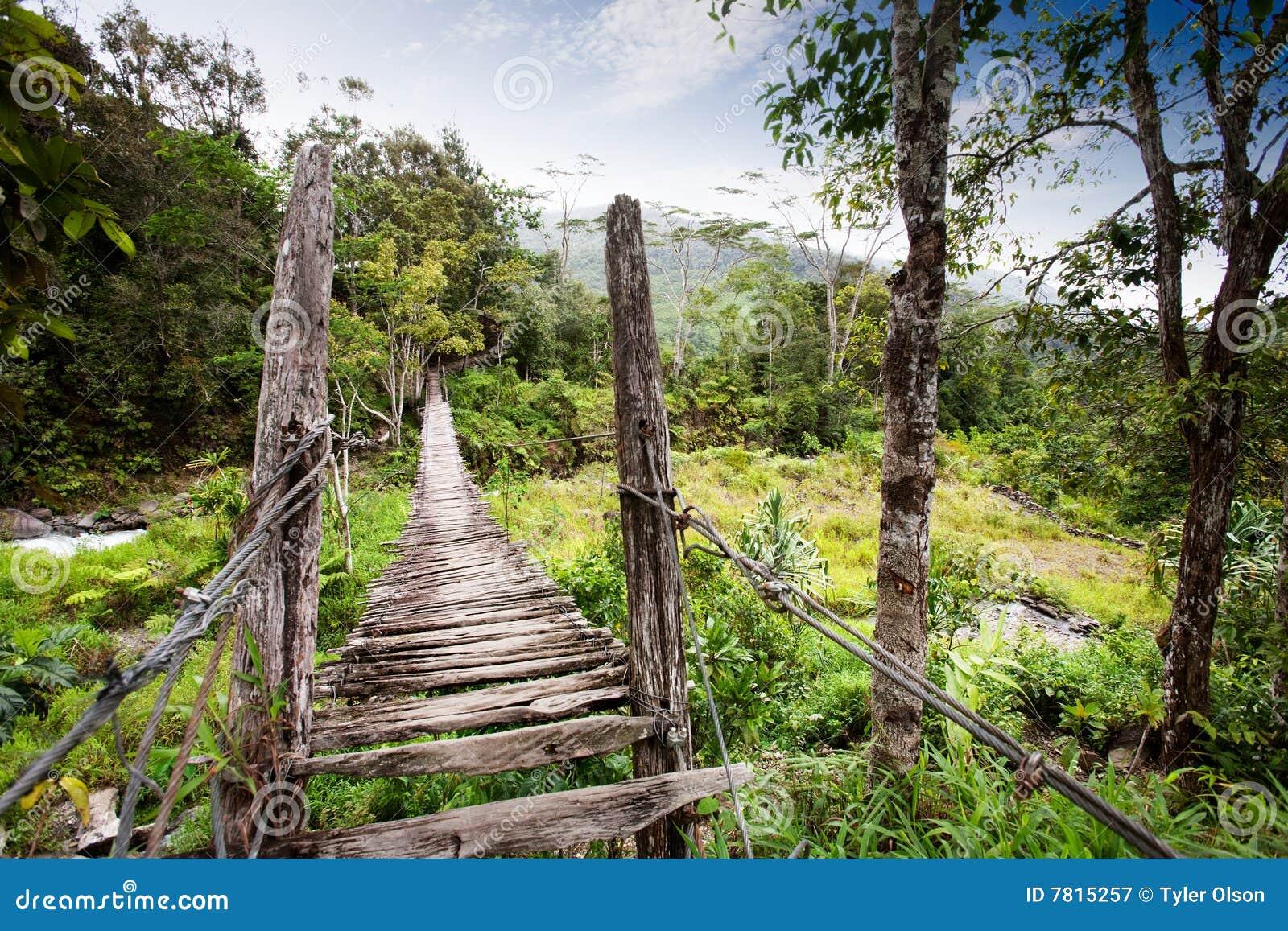 Hänga för bro
