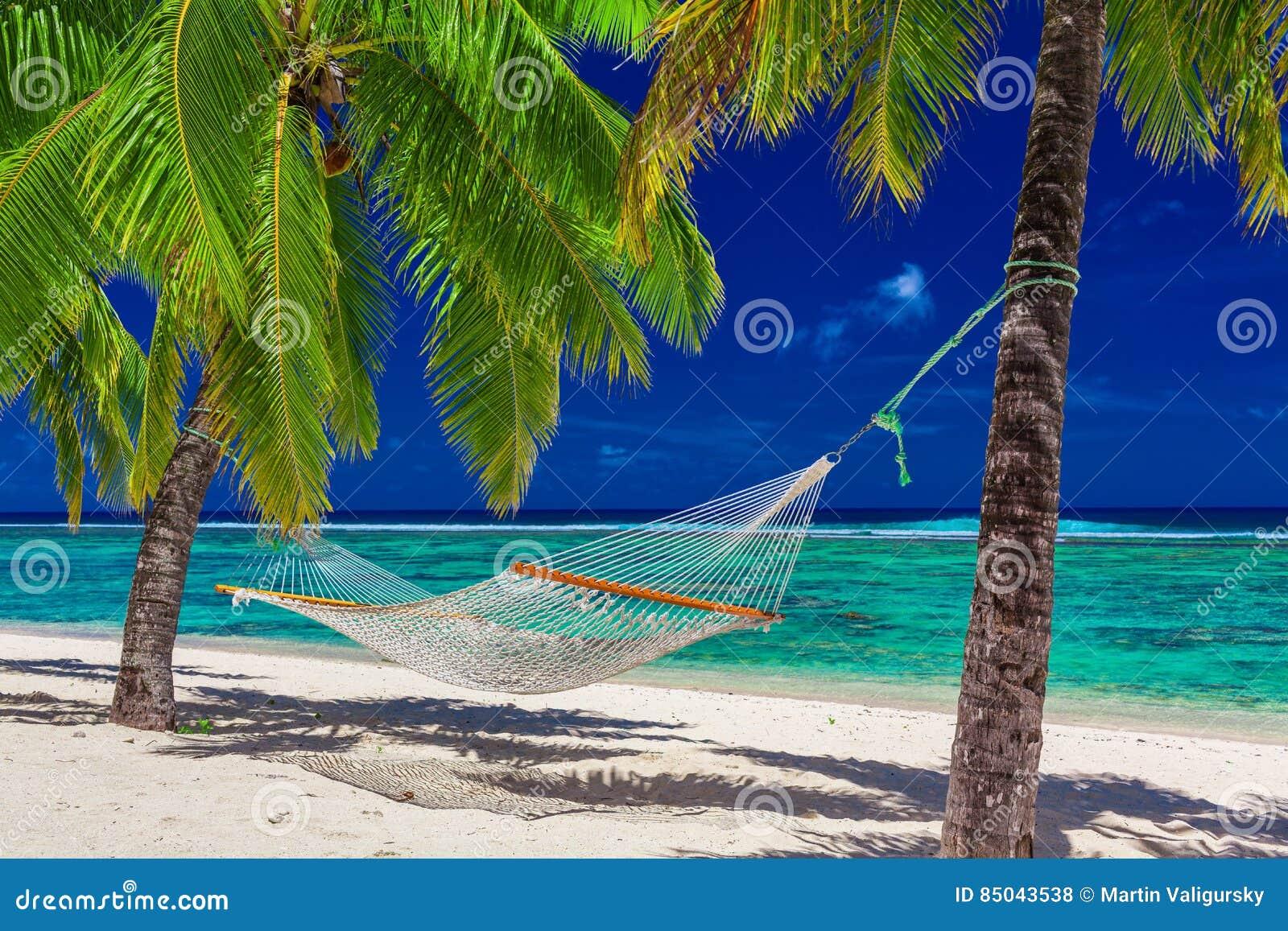 Hängematte zwischen Palmen auf tropischem Strand von Rarotonga, Koch