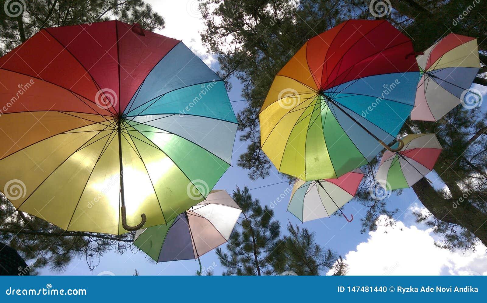 Hängender Regenbogen-Regenschirm bei Gayo Highland Park, zentrales Aceh, Indonesien