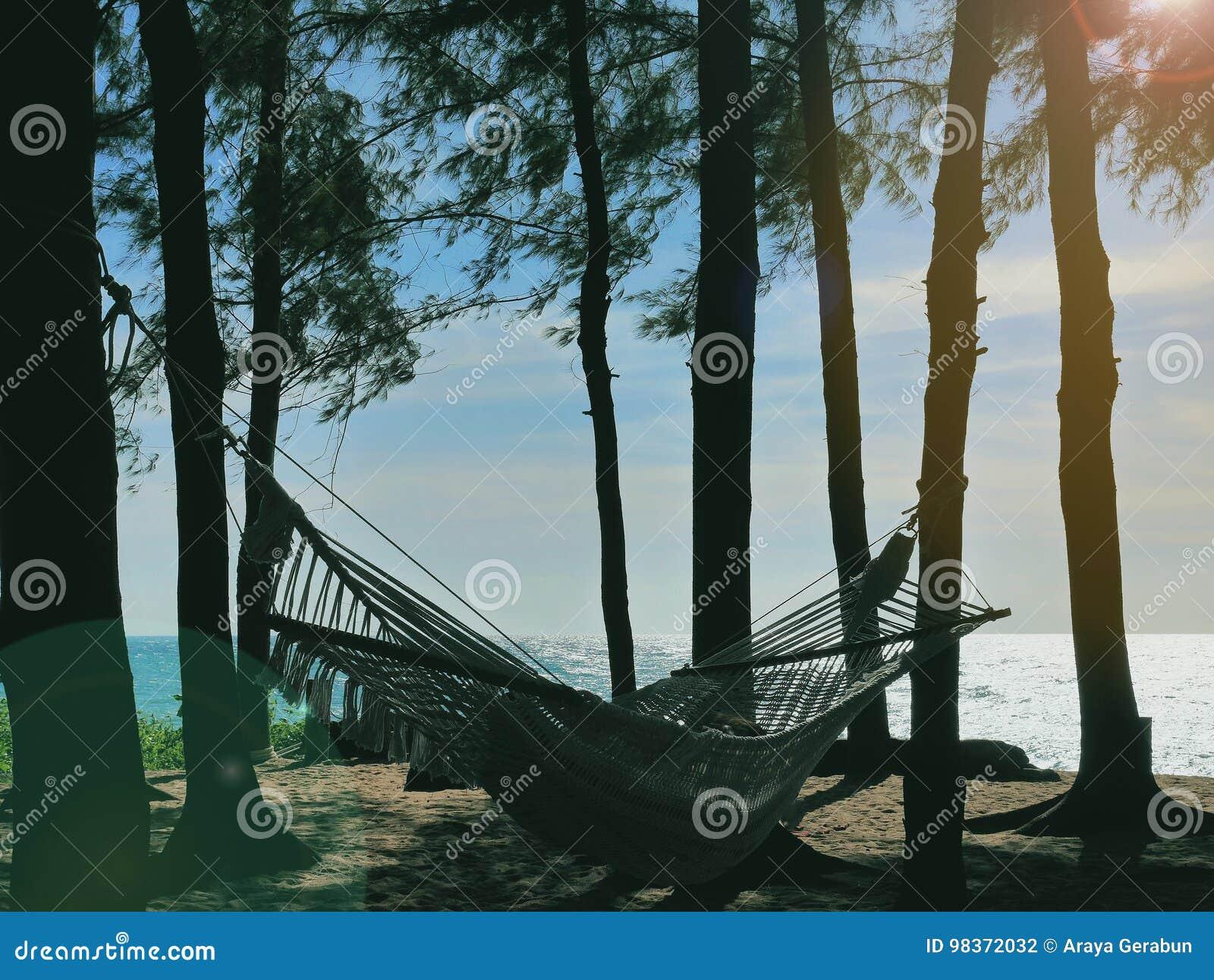 Hängmatta med personen på, bundet till träd bredvid den sandiga stranden, i avslappnande eftermiddag för miljö på senare, nästan