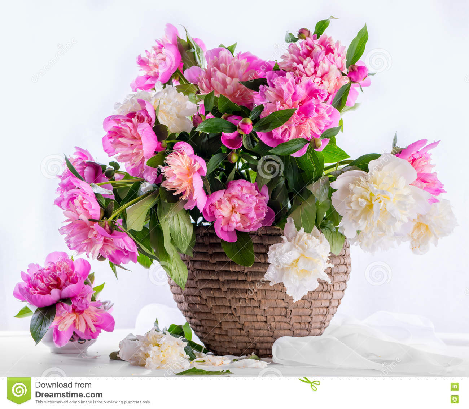 Härlig bukett av rosa och vita pioner