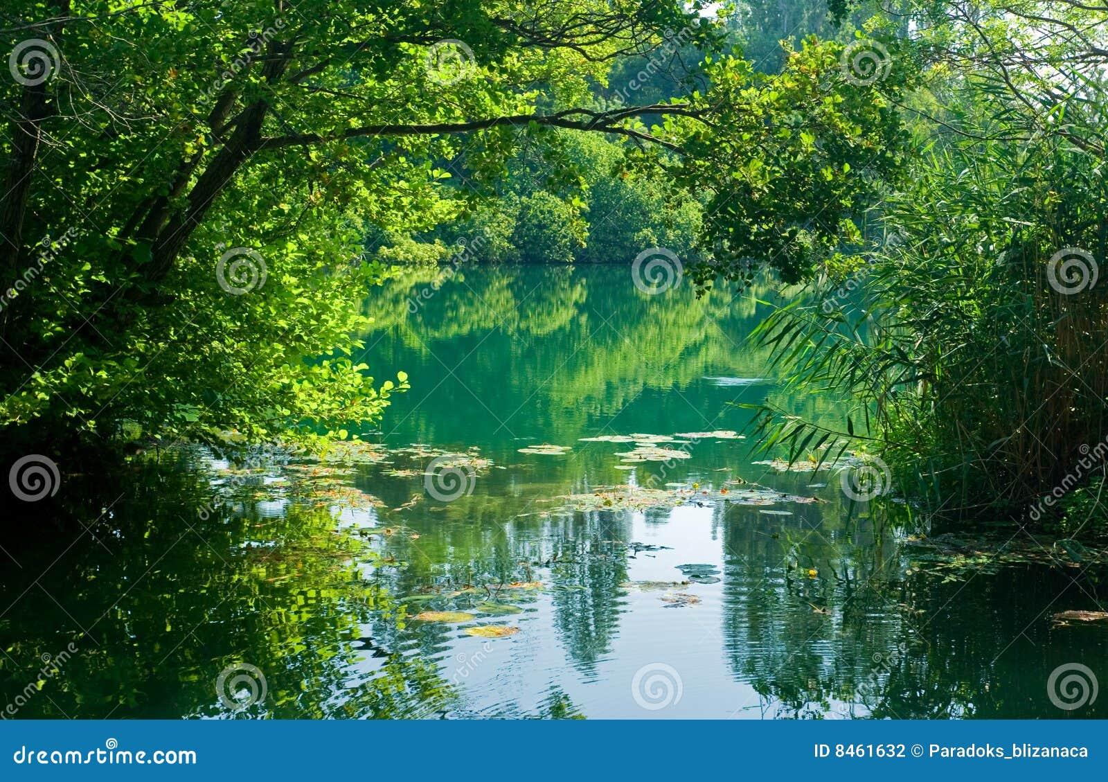 Härlig croatia flodplats