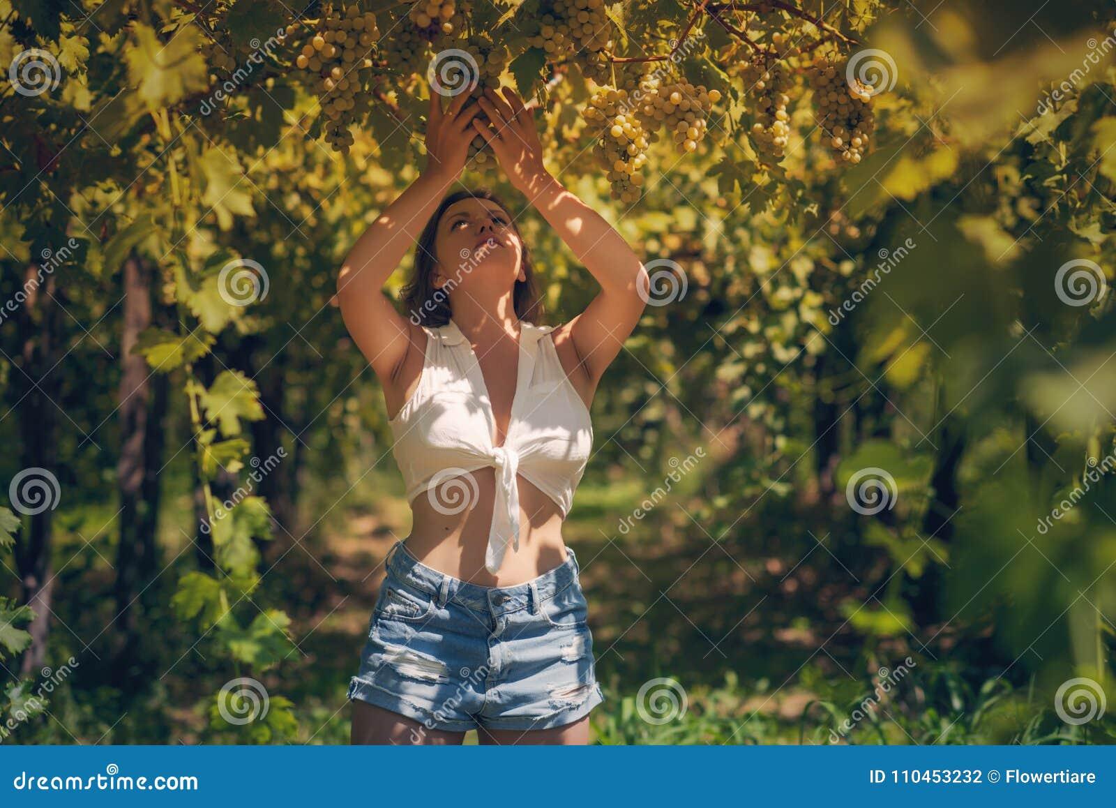 Härlig flicka i kortslutningar och överkant i en vingård på en varm solig afton