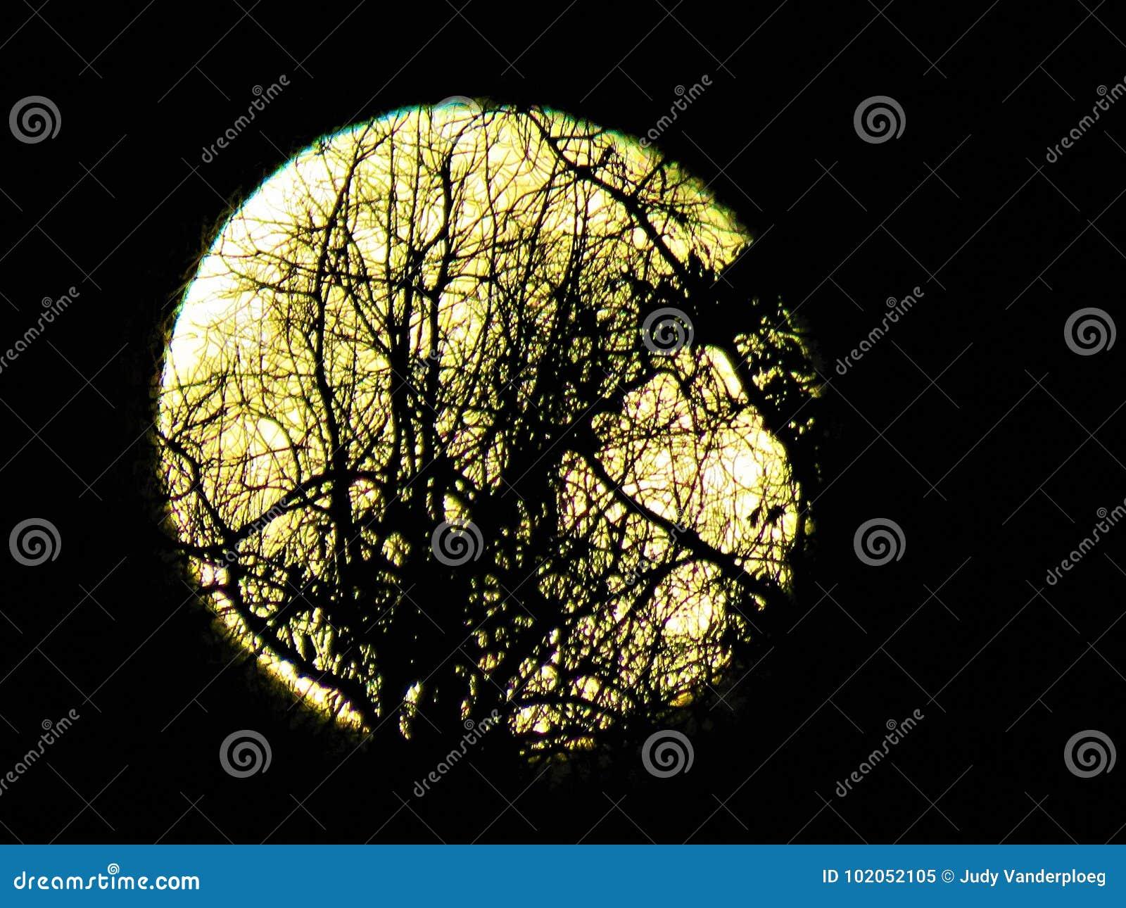 Härlig fullmåne närmast höstdagjämningen
