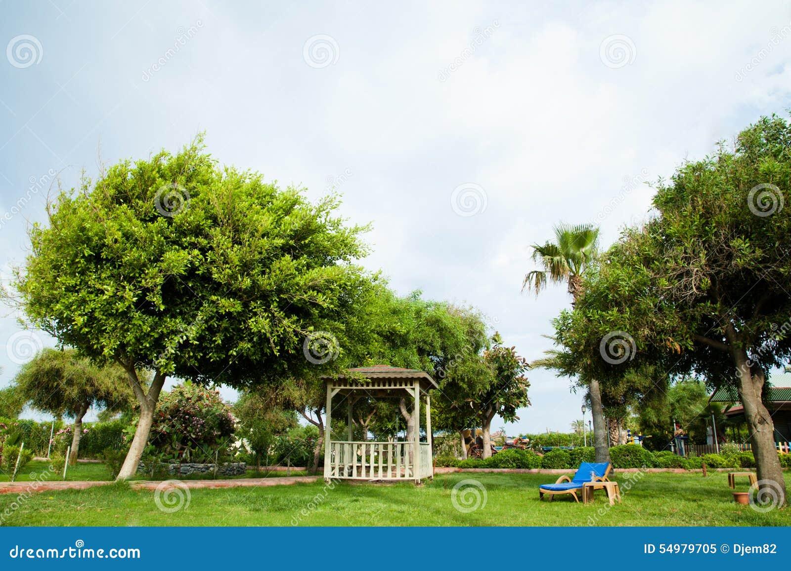 Härlig greenträdgård
