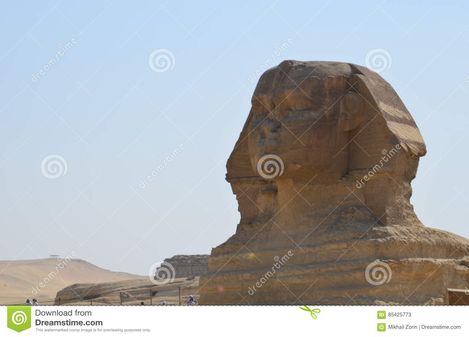 Härlig profil av den stora sfinxen