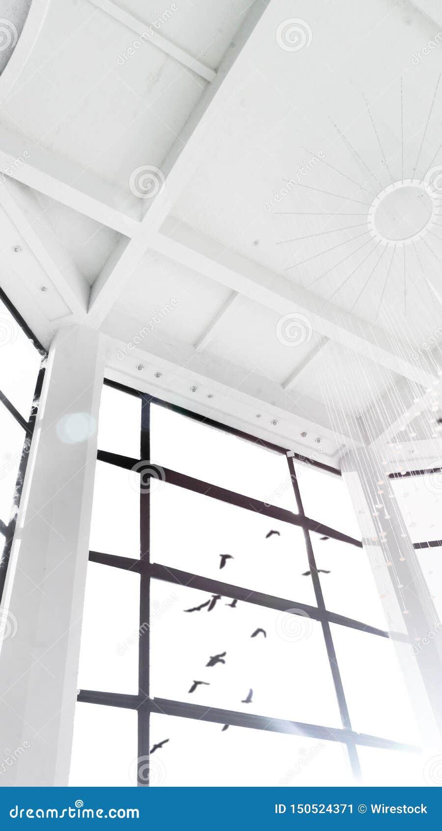 Härlig sikt från ett stort fönster av ett vitt högväxt rum av fåglar som flyger i himlen