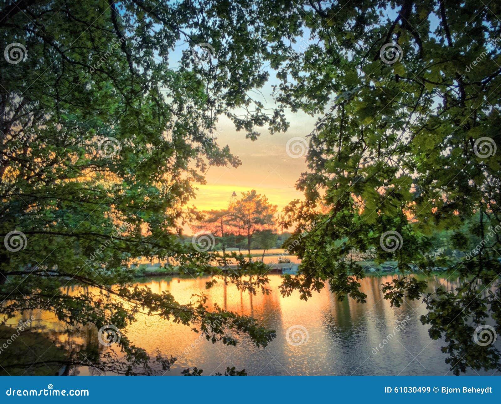 Härlig solnedgång över en skogsjö