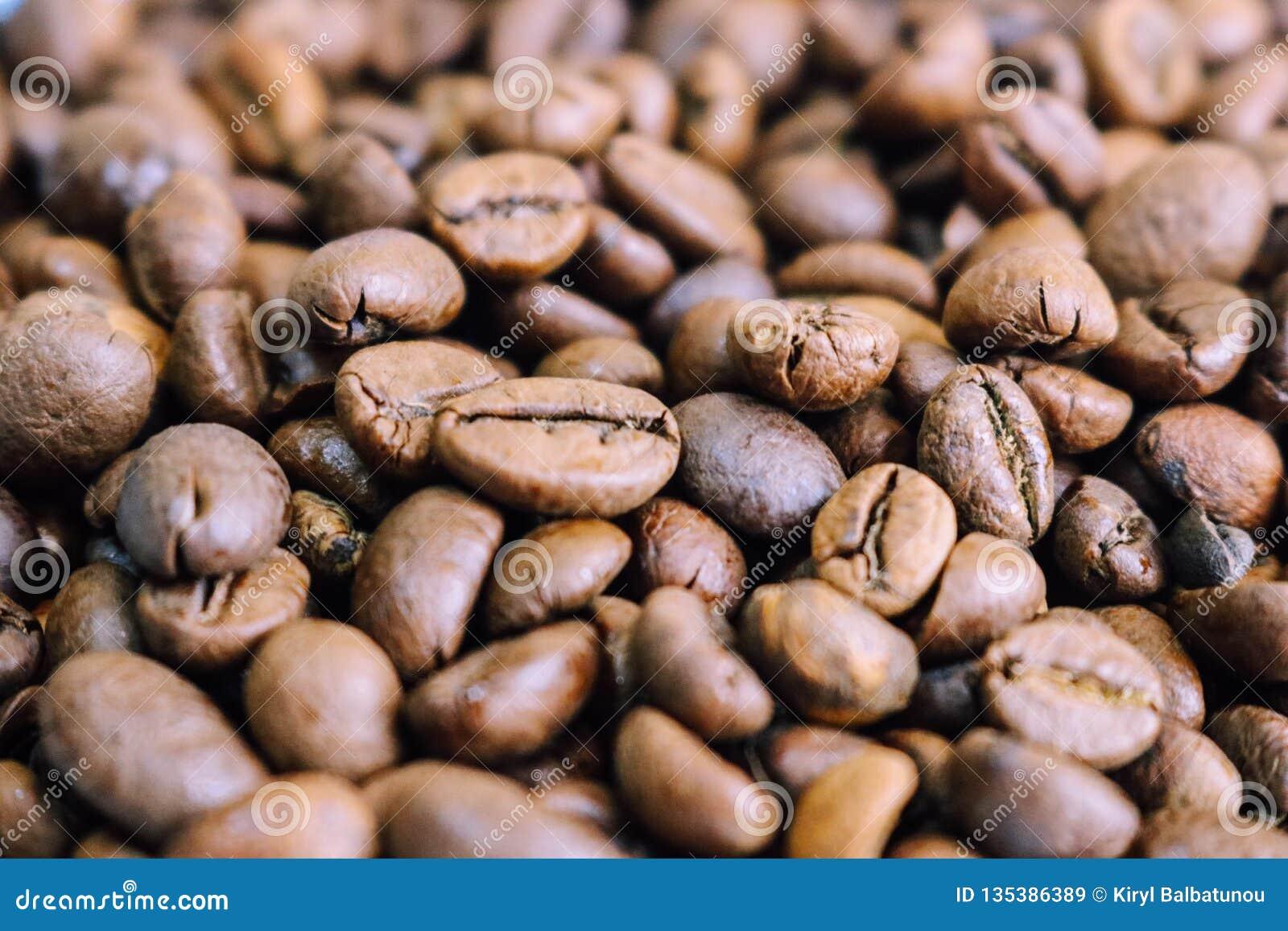 Härlig textur av nytt grillade utvalda läckra rika bruna naturliga doftande korn för kaffeträd, Arabicakaffebönor