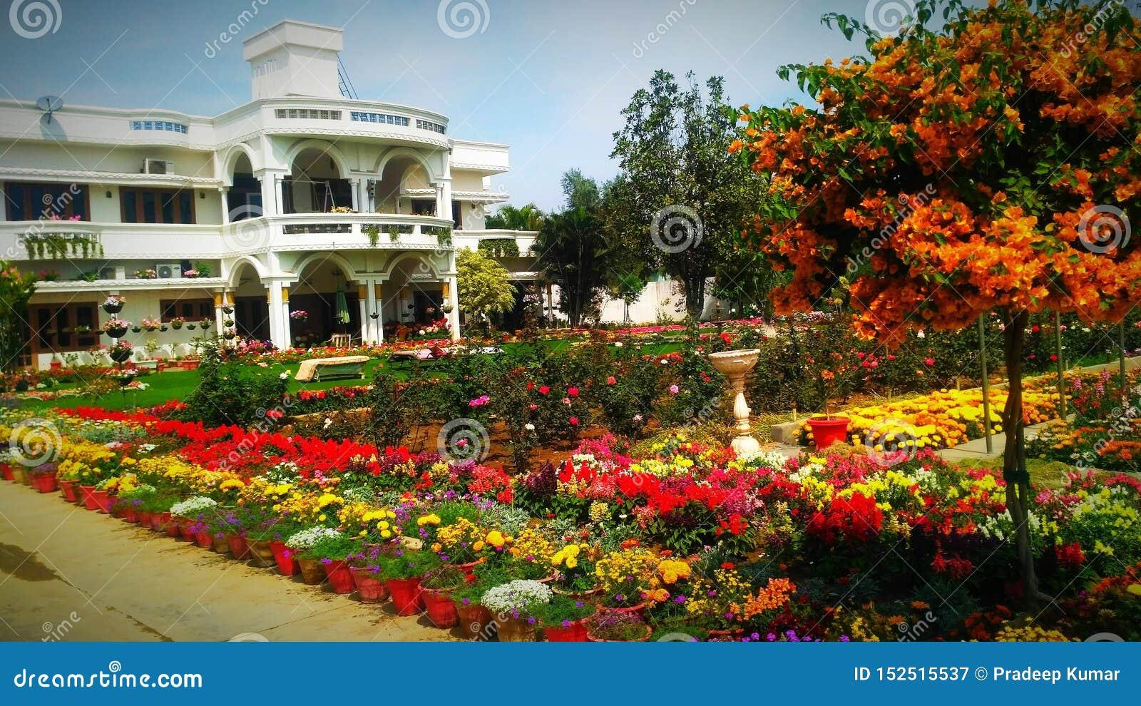 Härlig trädgård med den älskvärda uppehållet