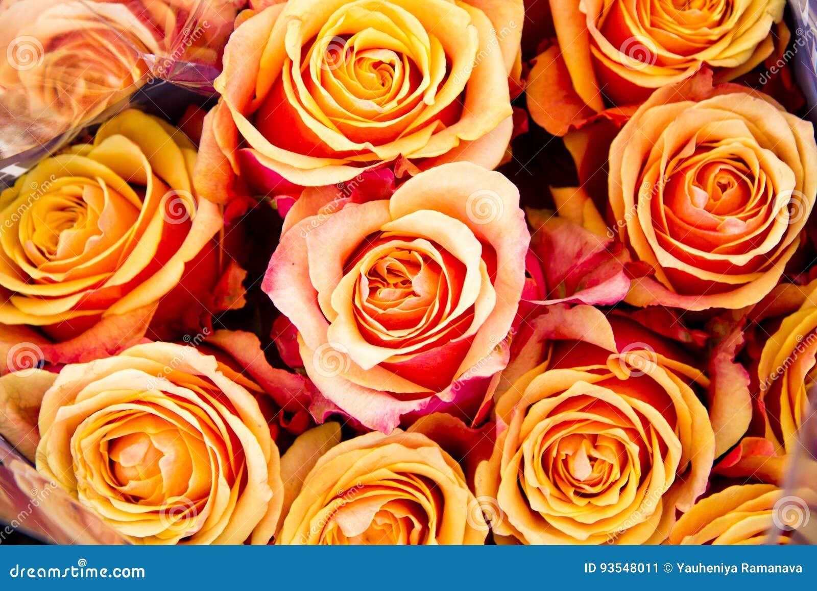 Härlig uppsättning av blommor