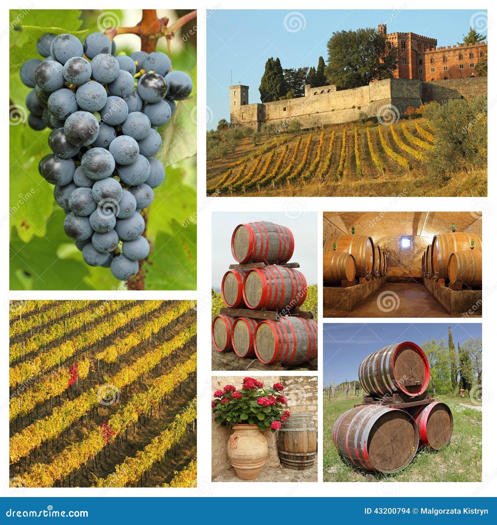 Download Härlig Uppsättning Av Vinbilder Arkivfoto - Bild av källare, affär: 43200794