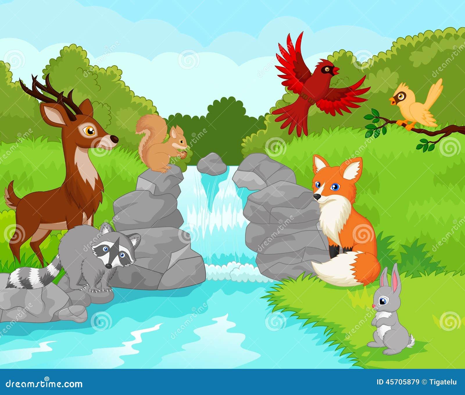 Härlig vattenfall med vilda djur