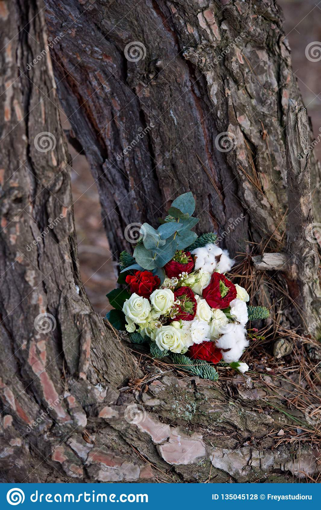 Härlig vinterbukett av granen, rosor och bomull Buketten för brud` s