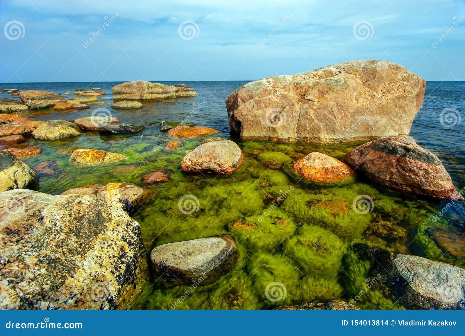 Härliga enorma stenar i havet med små stenar under vatten som är bevuxet med gröna alger i golfen av Finland
