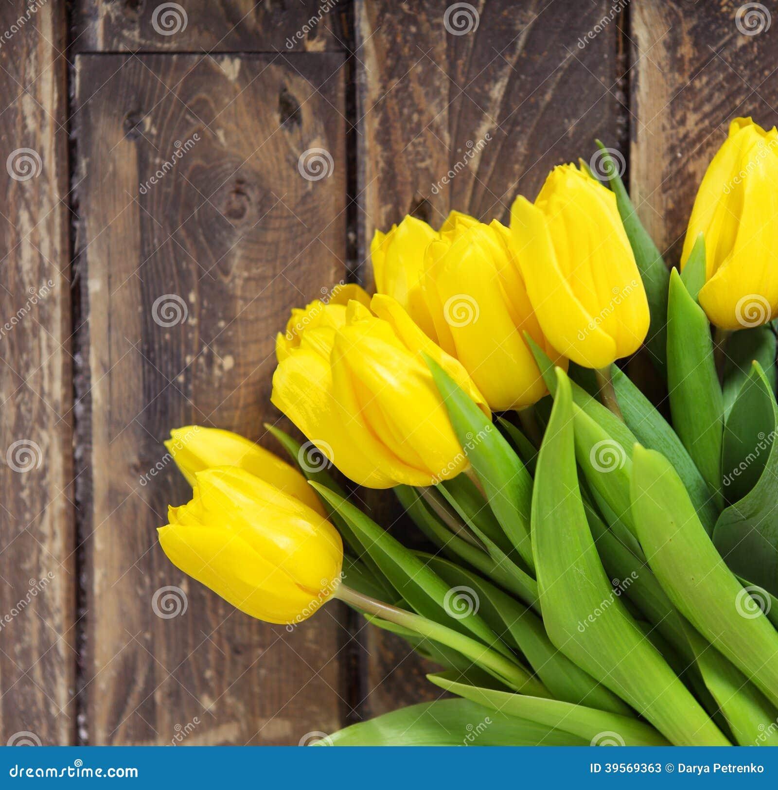 Härliga gula tulpan på träbakgrund