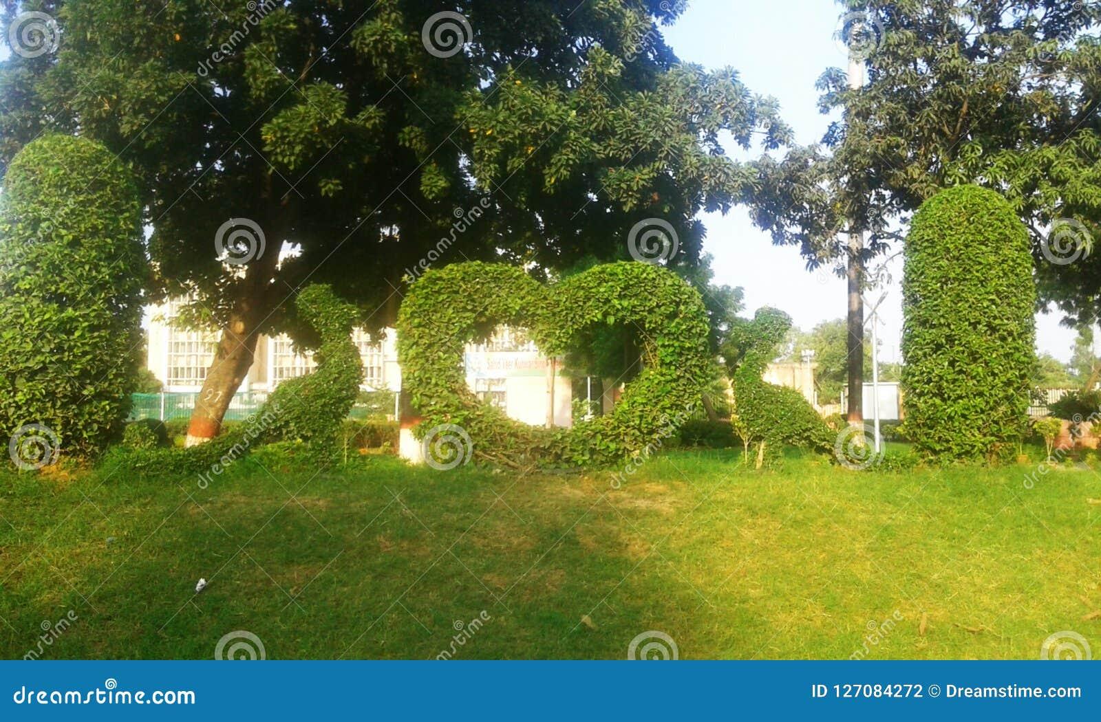 Härligt konstverk gjorde av gräs i grönt fält