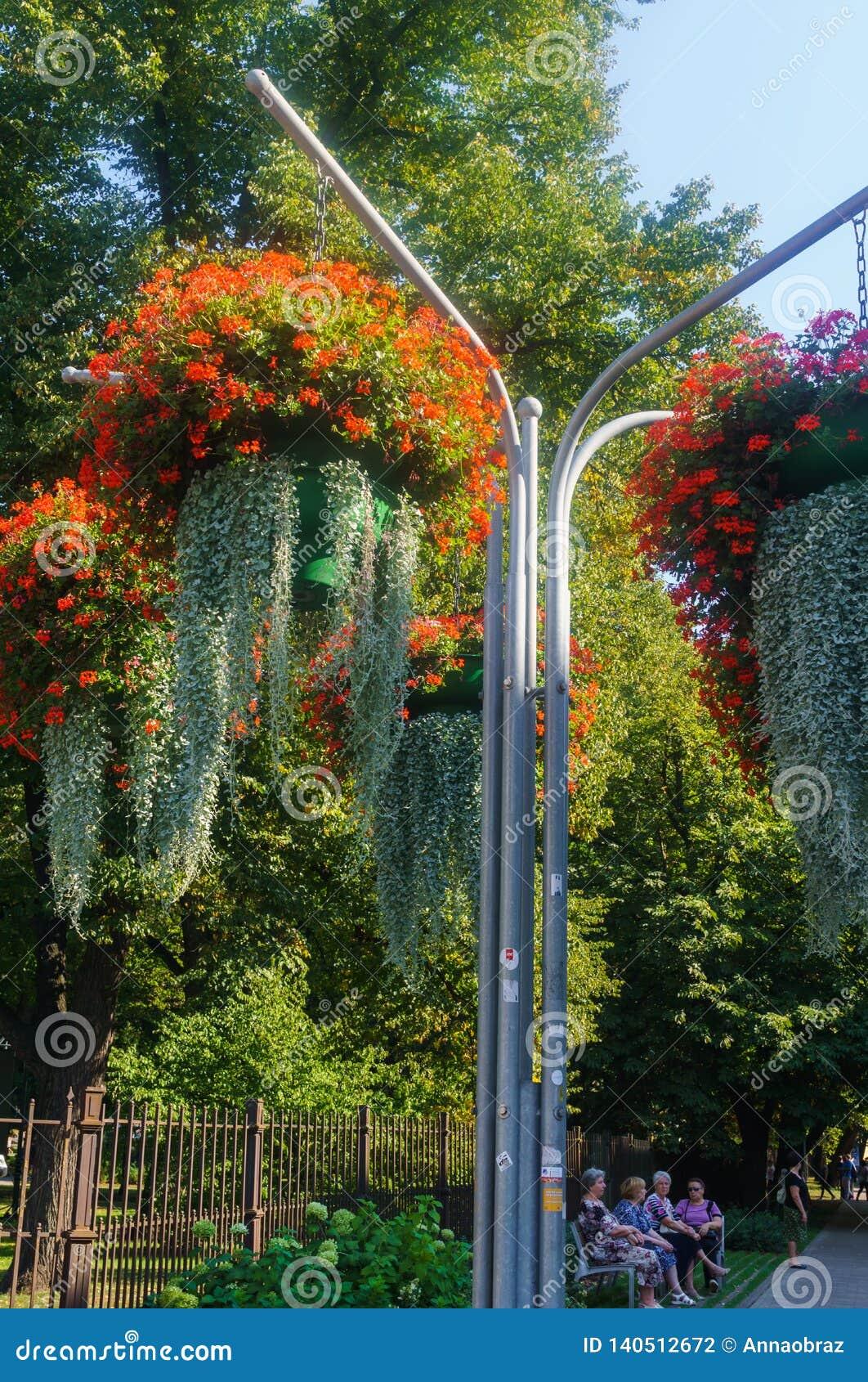 Härligt landskap av sommarträdgården Dekorativ sammansättning av färgrika blommor i Riga latvia
